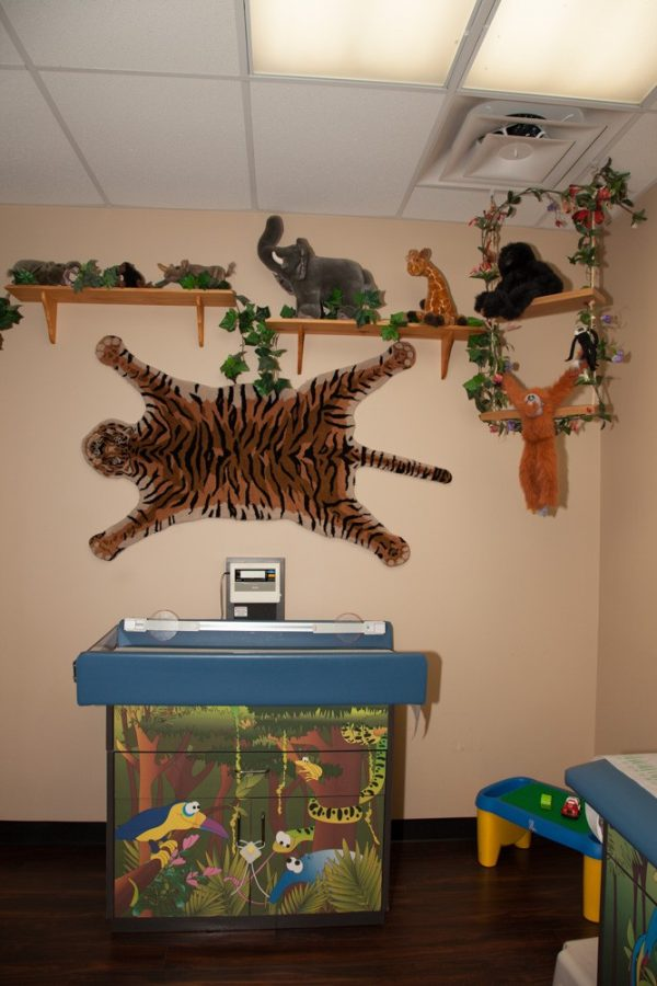 Child's exam room with fun jungle theme