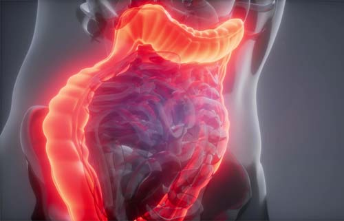 Illustration showing a glowing red colon in transparent body